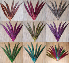 New 10-100Pcs beautiful natural pheasant Tail Feathers 30-35cm /12-14 inches