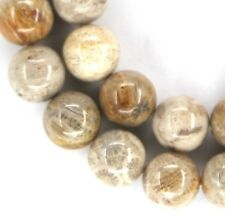 NATURAL Fossil Coral Round Beads VARIOUS SIZES 8mm, 16mm, 18mm