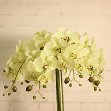 Artificial Silk Flower Butterfly Orchid Home Wedding Phalaenopsis Bouquet DIY
