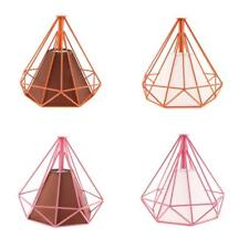 Lamp Cage Ceiling Light Shade Lampshade Pendant Lighting Fixture Home Ornament