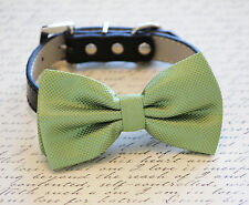 Green dog bow tie, bow attached to dog collar, green bow tie, dog wedding bowtie