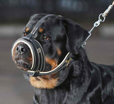The Royal Soft Leather Dog Muzzle by Dean and Tyler