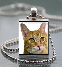 Orange Tabby Cat Scrabble Tile Pendant Handcrafted Recycled Tile Art Kitty AB03