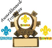 SCOUTS CUBS BOYS BRIGADE BEAVERS EXPLORER BROWNIES  GIRL GUIDES RAINBOWS TROPHY