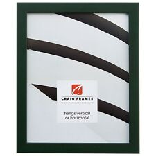 "Craig Frames Colori, 0.80"" Modern Green Picture Frame"