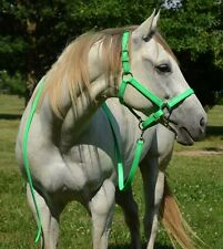 *HORSE SIZE* Any COLOR Horse HALTER & LEAD for Turnout Show BETA BIOTHANE