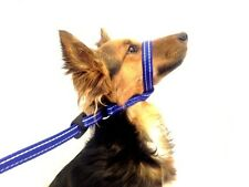 GENCON ALL IN 1 ALL IN ONE DOG HEADCOLLAR stops pulling dog puppy stop pull