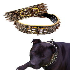 Dog Collar Spiked Gold Crocodile Leather M L XL-  Staffy Stud Studded Large Pet