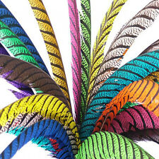 LADY AMHERST CENTRE TAIL FEATHER - craft, millinery, headpiece, showgirl, art