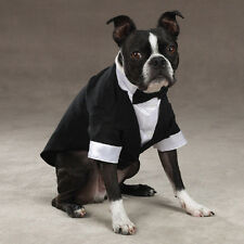 TUXEDO Dog, All Sizes, Wedding Formal Clothes, Tux, Bow Tie, Yappily Ever After