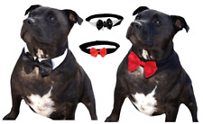 LARGE BREED Dog Bow Tie Collar 2XL 3XL 2 Designs- Wedding Formal Party Necktie