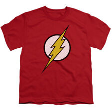 The Flash Logo DC Comics Superhero Big Boys T-Shirt Tee