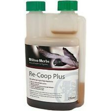 HILTON HERBS RE-COOP PLUS pigeon natural formula training and competition