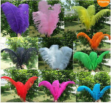 Wholesale,10-50pcs High Quality Natural OSTRICH FEATHERS 15-55cm/6-22 inch