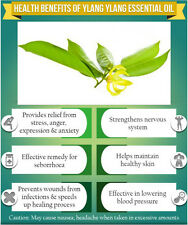 Ambrosial Ylang Ylang Essential Oil 100% Pure Organic Natural