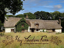 *Special Offer* Spring Break - C12th Thatched Cottage B&B Devon/Cornwall Border