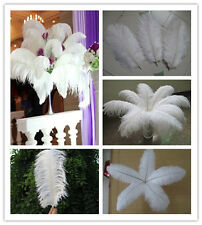 Wholesale 10-100pcs High Quality Natural WHITE OSTRICH FEATHERS 6-26inch/15-60cm