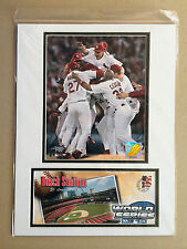 ST LOUIS CARDINALS WORLD SERIES YADIER MOLINA 12X16 MATTED PHOTO & EVENT COVER