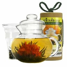 Primula 40oz Glass Teapot with Infuser, Lid with 12 Flowering Teas in a Canister