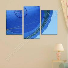 Synthetic CANVAS  Split 3 panels Hot Air Balloon 3 Panels GICLEE art photos