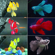 Fish Tank Aquarium Underwater Floating Clownfish Ornament Decor With Suction Cup