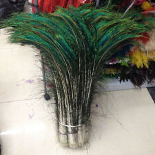 Wholesale 10-500pcs Natural peacock feathers 28-32 inches/70-80cm