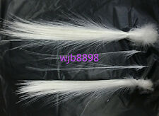 wholesale! 10 pcs rare natural white feather 8-14 inches /20-35 cm Free Shipping