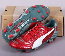 PUMA Men Cleats evoPOWER 2.2 Graphic FG Soccer Football Shoes Spike GYM 10342401