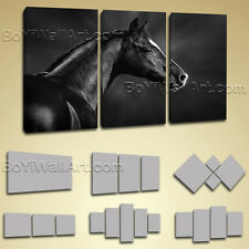 Single Panel Dark Horse Hd Giclee Print Canvas Wall Art Stretched Ready To Hang