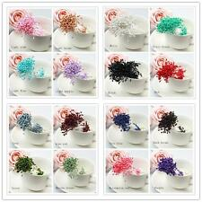 280/Artificial Flower Stamen Double Tip Pearlized Craft Cards Cakes Decoration#