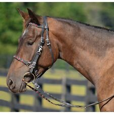 LARGE PONY  Size  HALTER BRIDLE & REINS made from BETA BIOTHANE (with BLING)