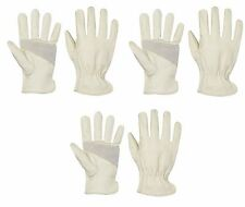 3 Pack Apollo®  Pigskin Leather Drivers/Work Gloves Sizes M-XL