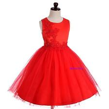 Floral Embroideries Pageant Party Wedding Flower Girl Dresses Size 3T-8 FG360