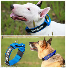 Pet Puppy Dog Training Collar With Handle Dog Control Collars Strong Nylon S M L