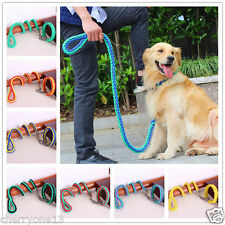 Large Dog Leash and Collar Pet Puppy P style Collars Lead Training Dogs M L XL