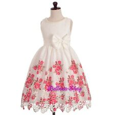 Embroidery Lace Floral Pattern Wedding Party Flower Girl Dress Size 3T-10 FG331