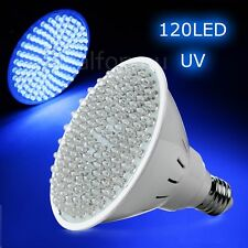 E27 8W Ultra Bright UV Ultraviolet Color Purple Light 120LED Lamp Bulb 110V/220V