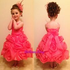 Embossed Roses Organza Dress Wedding Flower Girl Pageant Party Size 3T- 11 FG267