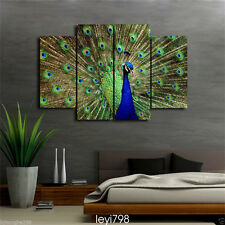 Modern Home Decor Canvas Painting HD Print Picture Art Animal Peacock 4PCS