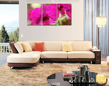 Modern Home Decor Canvas Painting HD Print Picture Art Scarlet flower 3PCS
