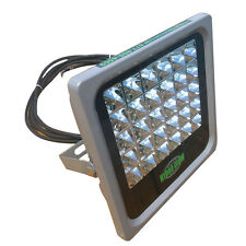 Hydro Glow FL30 30W/120VAC Flood Light - Green