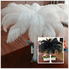 Wholesale*10-100pcs High Quality Natural  OSTRICH FEATHERS 6-24inch/15-60cm