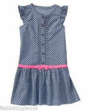 NWT Gymboree Girls Picture Day Blue Polka Dot Ribbon Dress Size 4