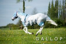 Gallop Horse Fly Rug Set | Combo neck cover and mask bug rug insects biting