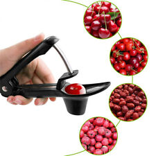 Olive Core Seed Remover Go Nuclear Device Fruit Vegetable Tool Cherry Pitter
