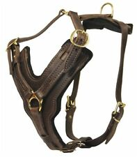 The Victory Pro Leather Dog Harness with Strong Buckles Great for Agitation Work
