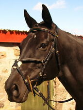 FSS German COMFORT Padded GOLD STITCH Mexican Grackle Figure 8 Noseband Bridle