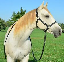 * DRAFT HORSE SIZE ** Leather with DIAMOND PATTERN Horse HALTER & Matching LEAD