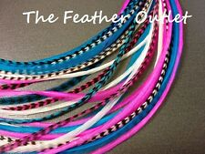 Feather Hair Extensions Lot Grizzly Striped Real Thin Skinny Long Pink Blue CAN.