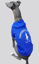 LARGE BREED Blue Dog Hoodie Jumper  Coat Jacket Training Clothes Running Fitness